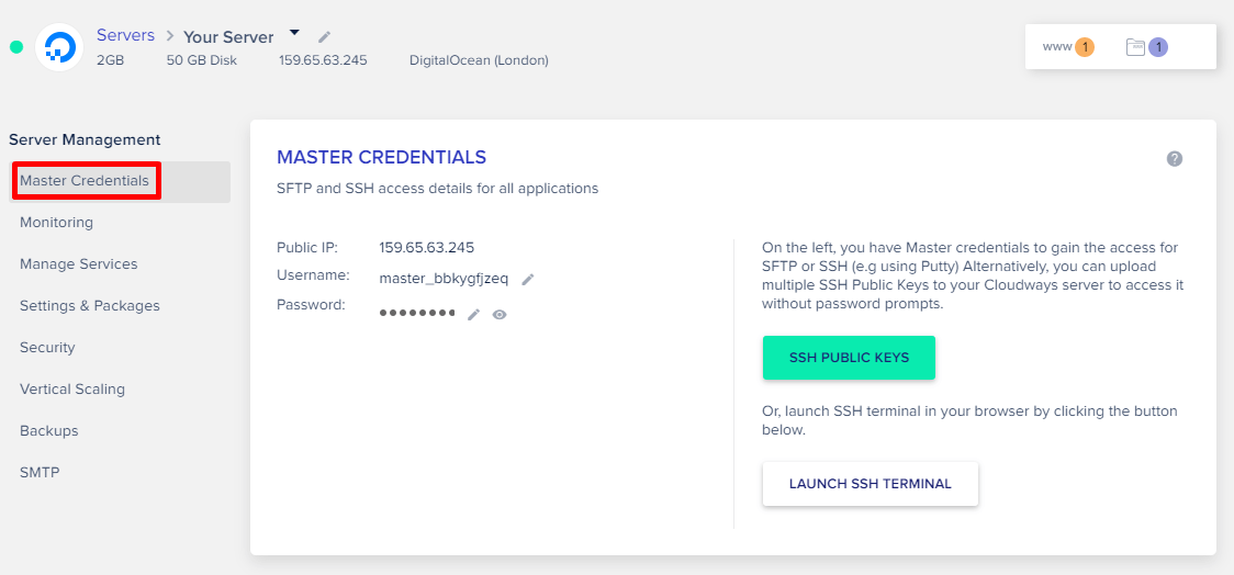 Cloudways Master Credentials